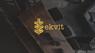 Работа в EKVIT